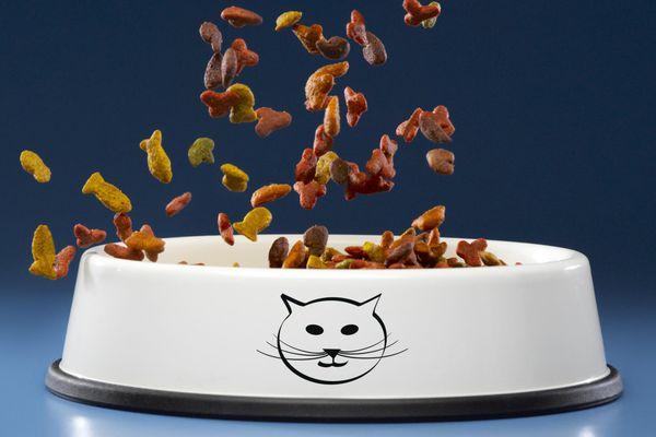Cat food falling into a cat bowl
