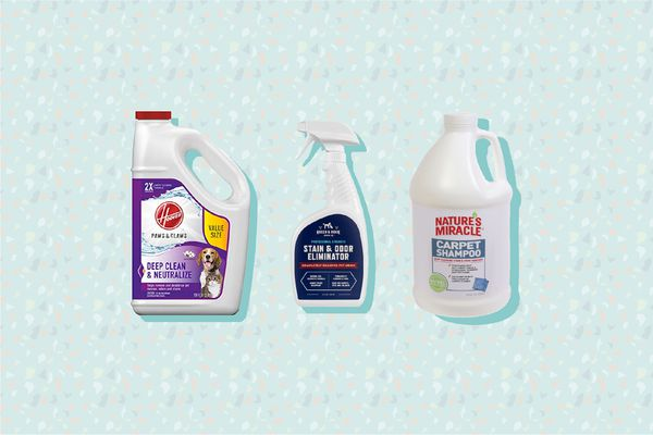 Best Carpet Cleaner Solutions for Pets