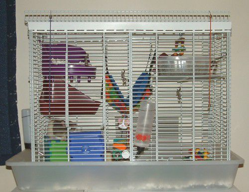 Homemade Rat Cage - Final Edition