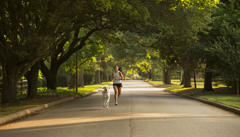 Caucasian woman and dog jogging on neighborhood street