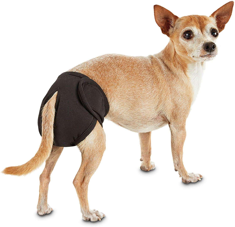 So Phresh Washable Diaper for Dogs X-Small