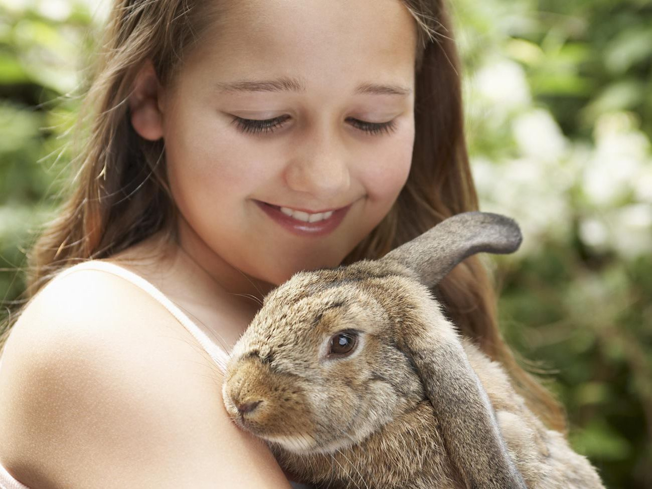 Keeping And Caring For Rabbits As Pets