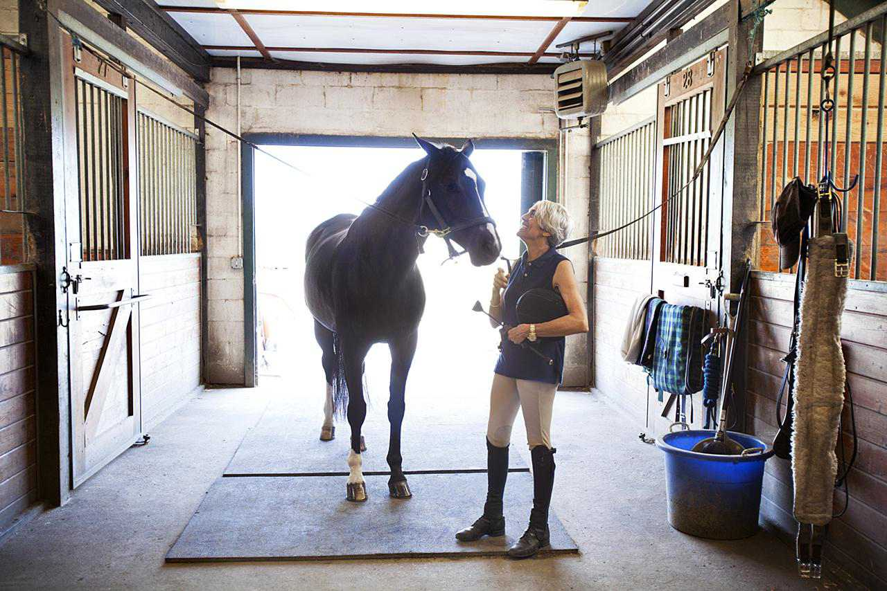 horse in stable aisle with woman