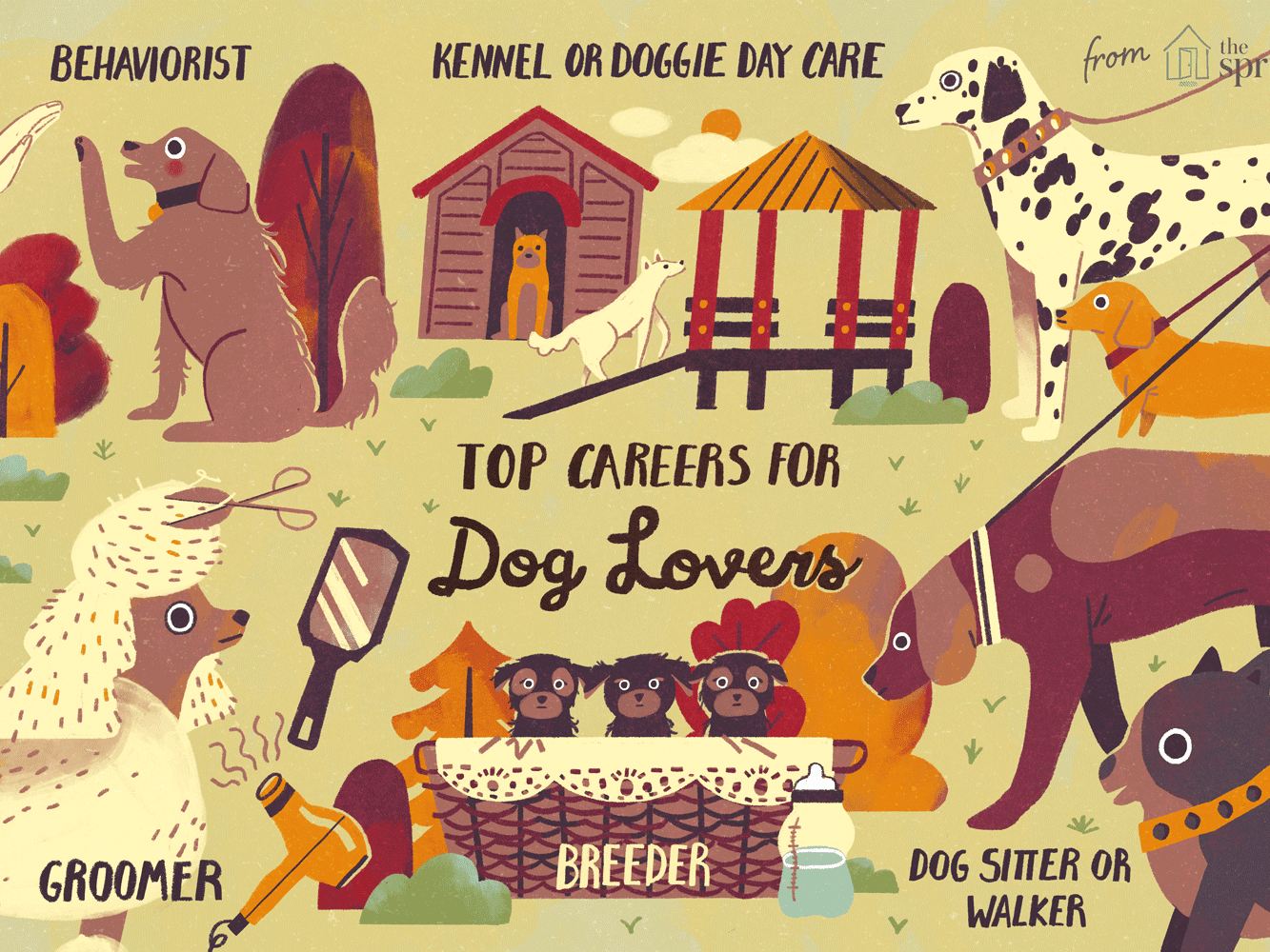 Top Careers for Dog Lovers