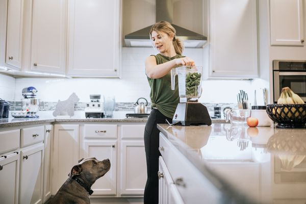 Dog stares at spinach protein shake