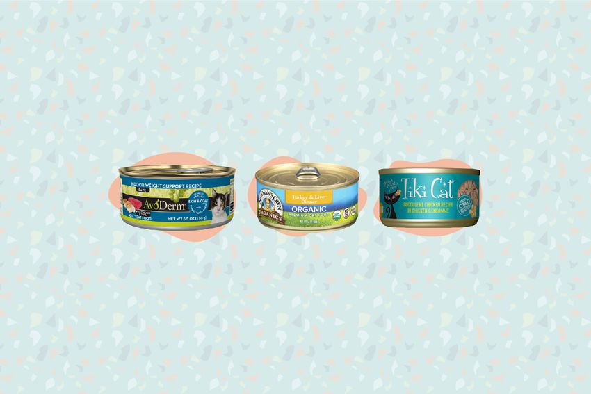 Best Canned Cat Foods