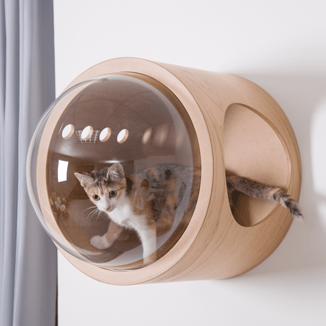 MyZoo Spaceship Gamma Cat Bed