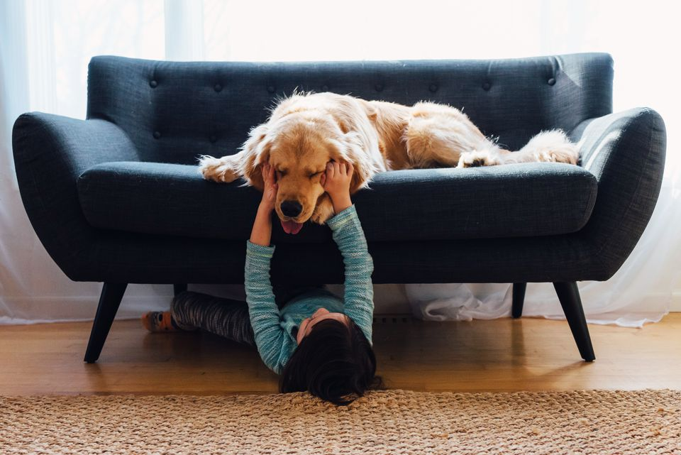 Girl lying under sofa playing with her dog