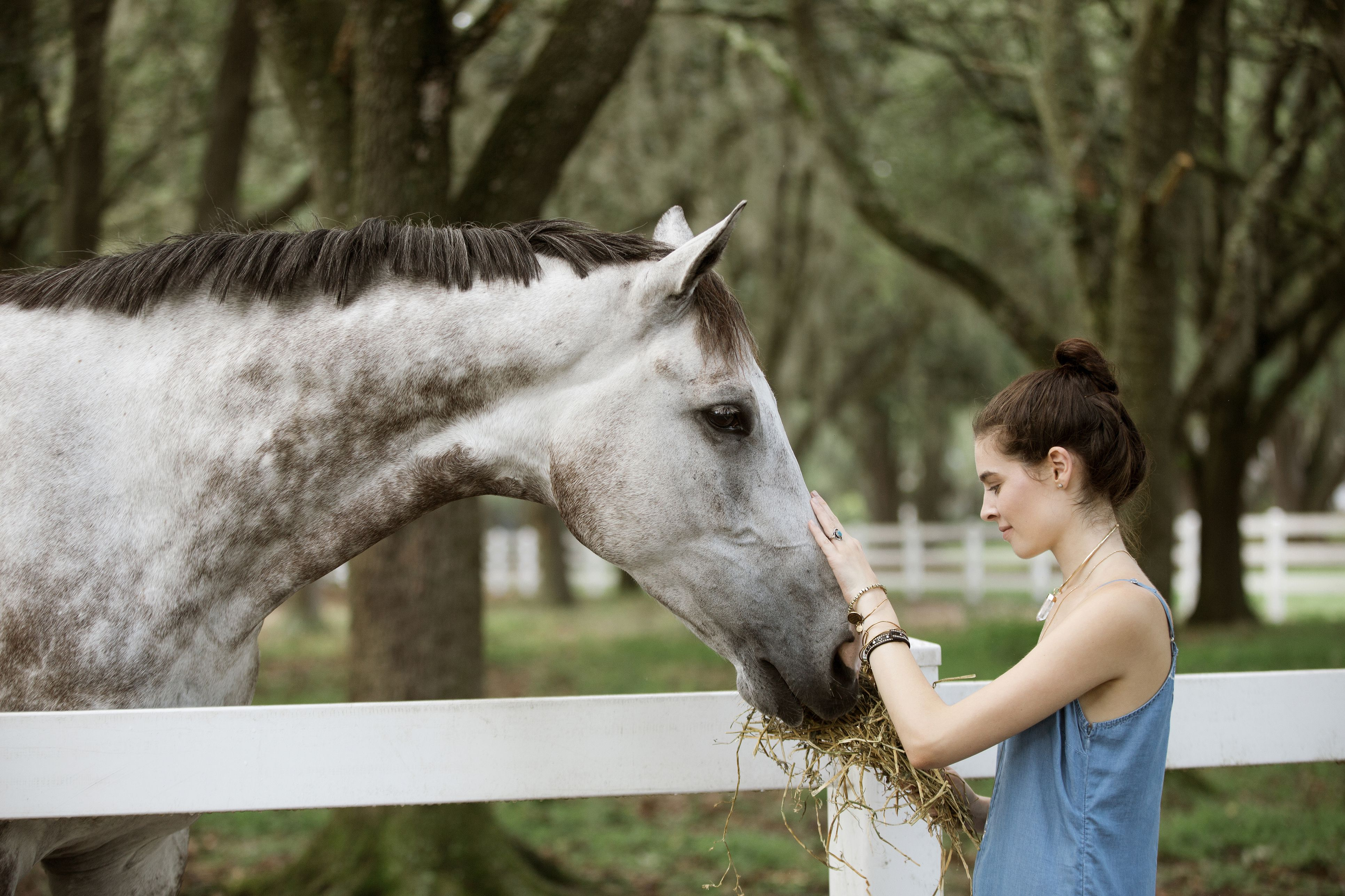 Side view of woman feeding horse