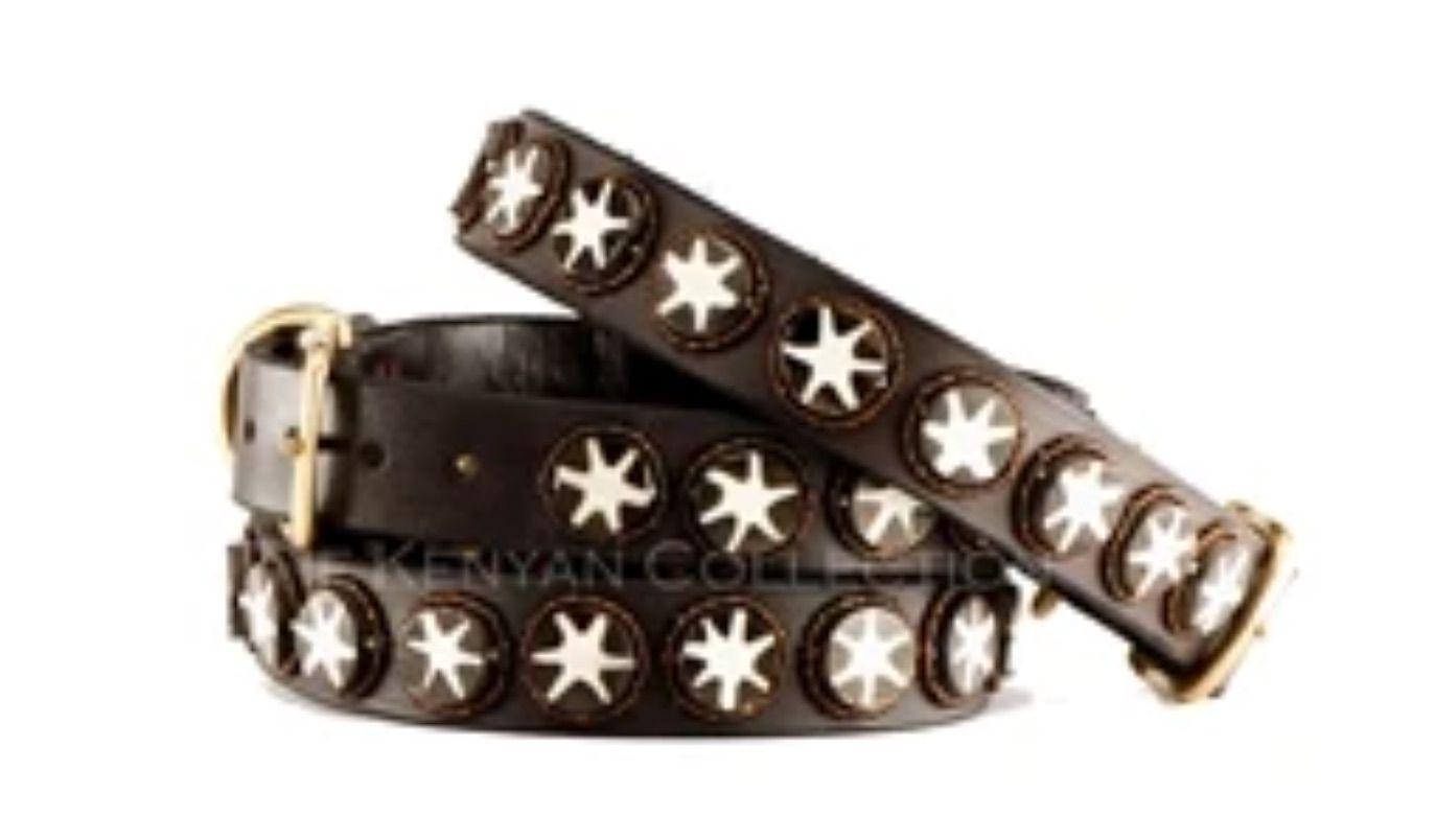 Batik Bone Star Beaded Dog Collar