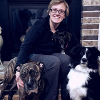 Dr. Rockwell and her dogs
