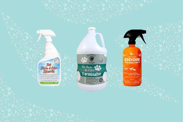 Best Cat Pee, Odor, and Stain Removal Products