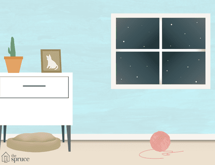 what to do if your cat dies at home