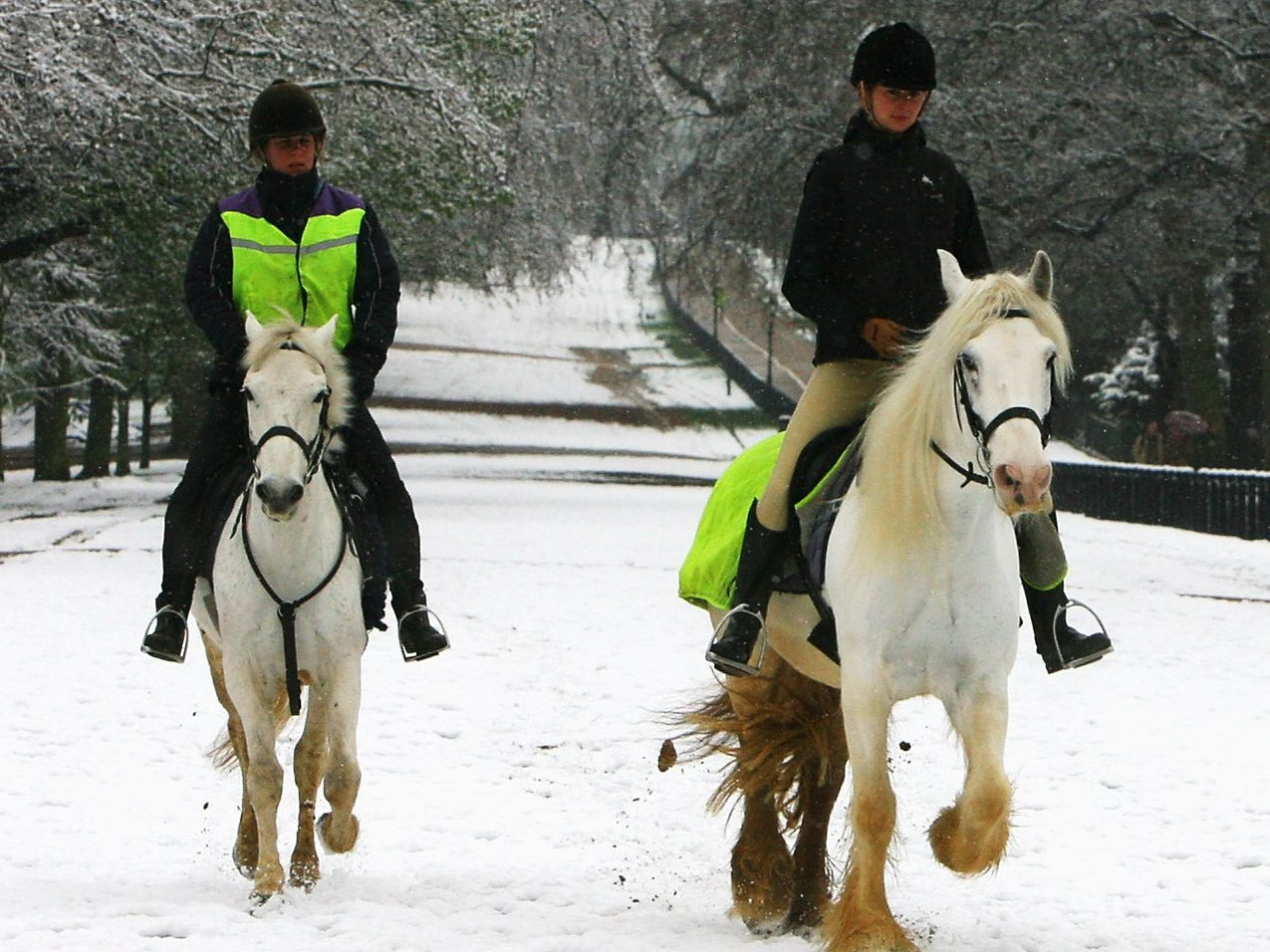 11 Tips for Riding Horses in Winter
