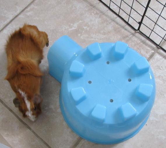 Super Pet Plastic Igloo