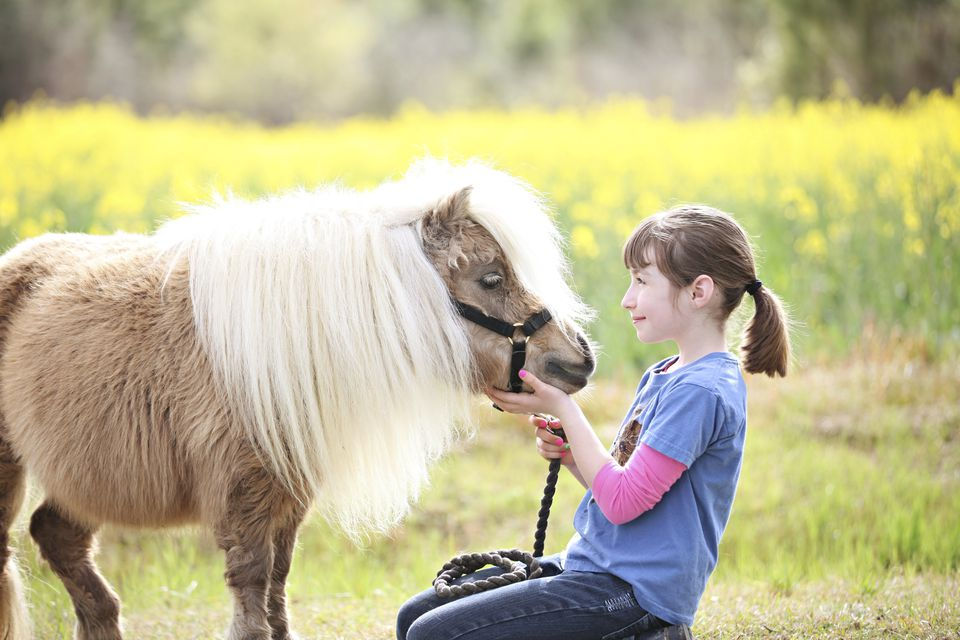Girl petting pony in a rural field.