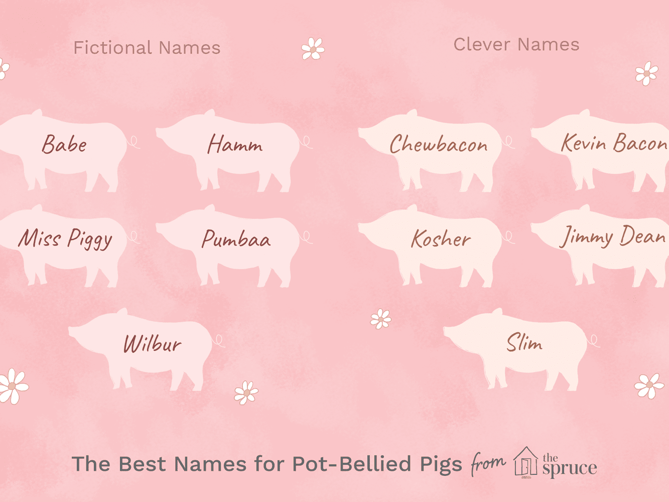 46 Names For Pet Pot Bellied Pigs