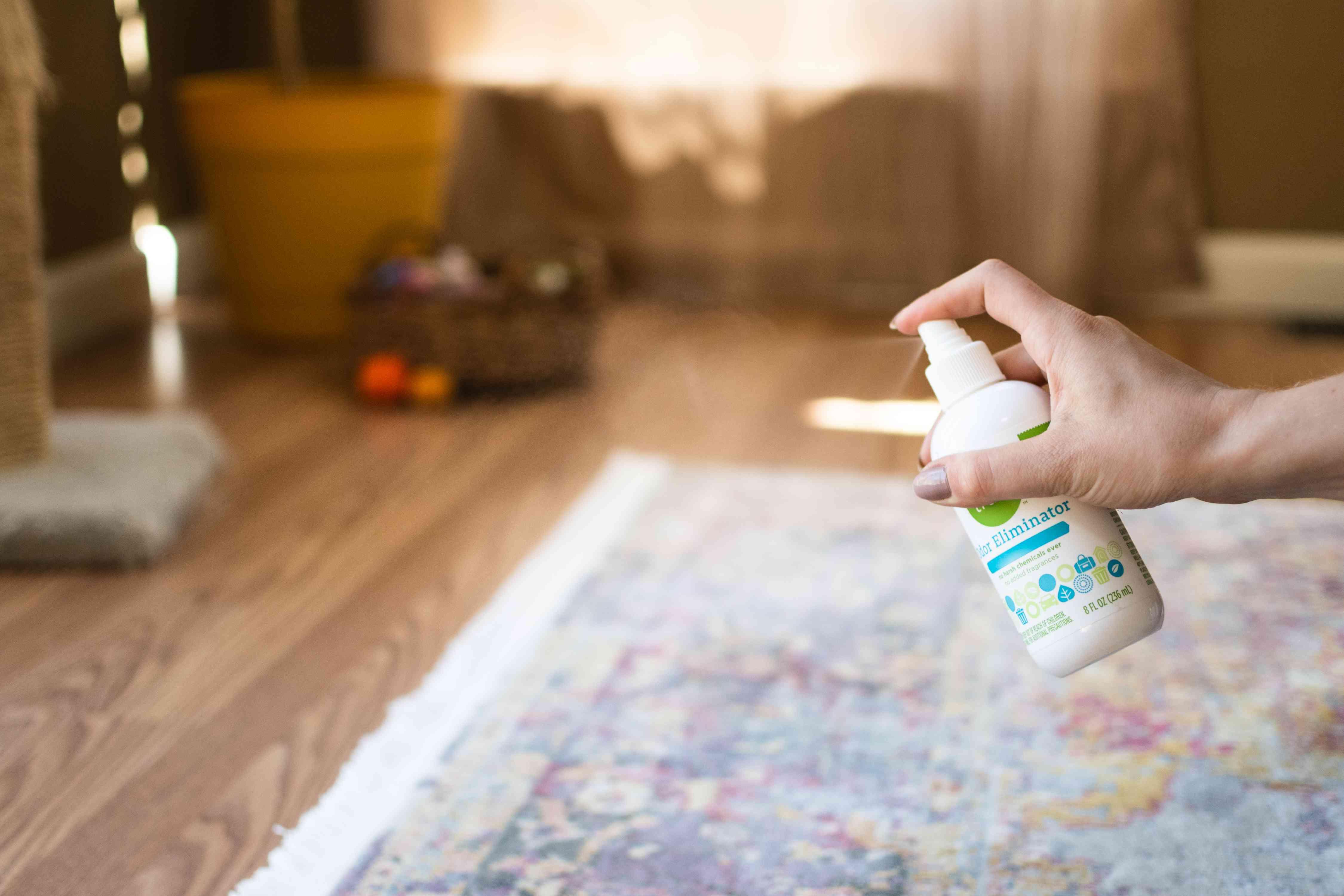 Urine odor remover sprayed on rug with cat pee