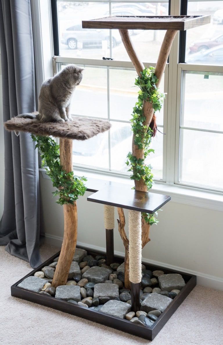 9 DIY Cat Tree Plans You Can Get for Free Homemade Tower Planters on homemade bell tower, homemade flower tower, homemade box tower, homemade plant tower, homemade garden tower, homemade light tower, homemade fruit tower, homemade water tower,