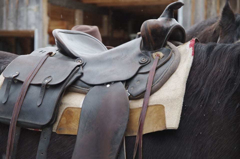 Close-Up Of Saddle On Horse