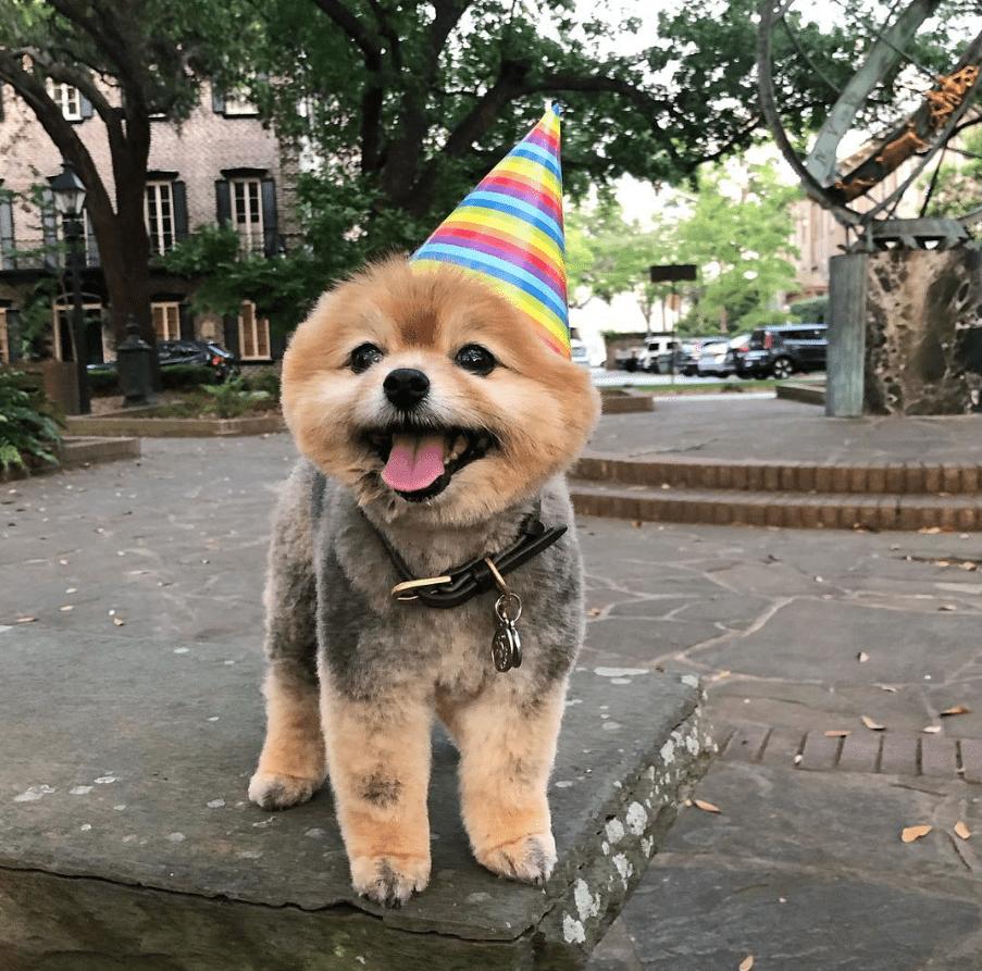 Zoe con sombrero de fiesta afuera