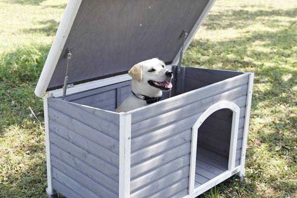Petsfit Dog House, Dog House Outdoor