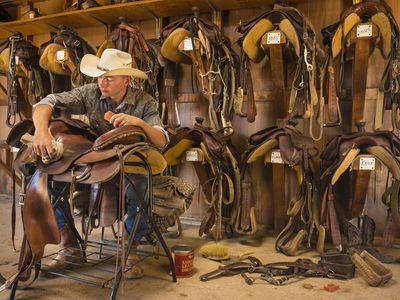What Western Saddle Seat Size Do I Need?