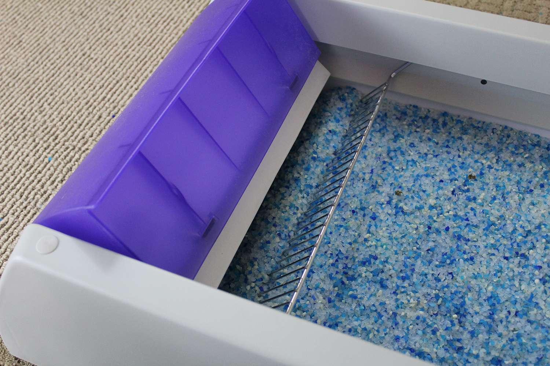 PetSafe ScoopFree Self-Cleaning Litter Box